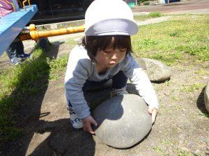 おおきな石はっけん! 持てるかな~?よいっしょっ!!