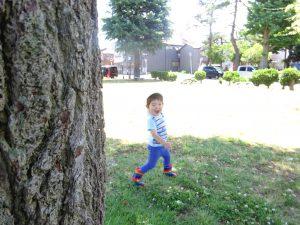 大きな木の陰から・・・ 『いないいないばあ~っ!』