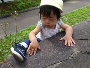 『わたしも石段にのぼってみたいな~』 『足をあげてよいっしょっと!!』