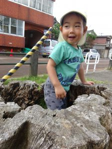 木の穴にすっぽり入っちゃった!