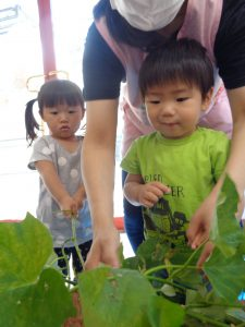 「これな~に?」 大きな葉っぱに ちょっとびっくり・・・